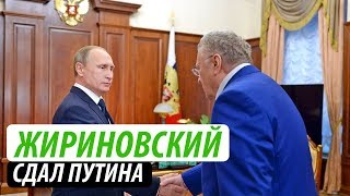 Жириновский сдал Путина