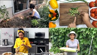 Welcome to  Bhavna's Kitchen & Living! Food Fitness Fashion Gardening Traveling Videos