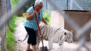 Fearless Grandma's Home Full Of Exotic 'Pets' Is Turning People's Heads