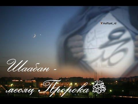 Месяц Шаабан и оскорбление Пророка ﷺ некоторыми мусульманами