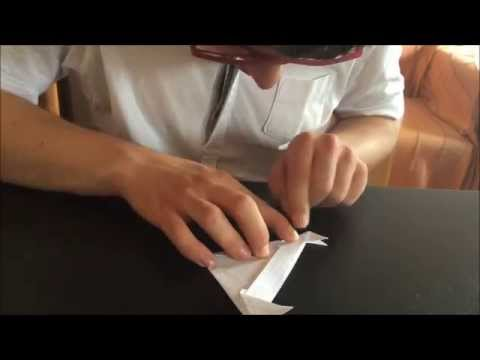 Watch video Síndrome di Down: Fare un pesce con gli origami