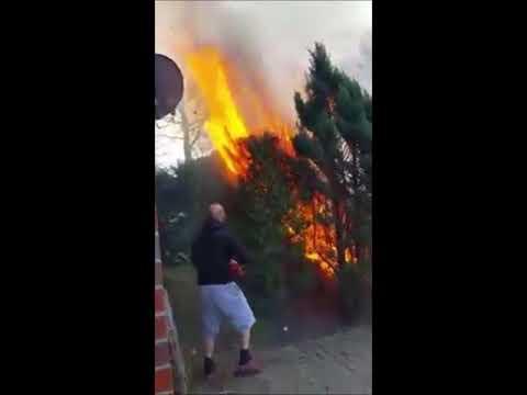 Assis und ihr Gartenfeuer