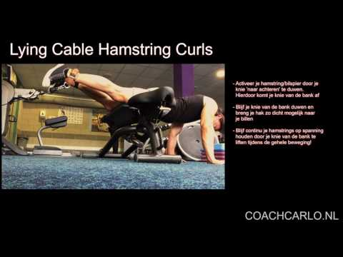 Lying Cable Hamstring Curls