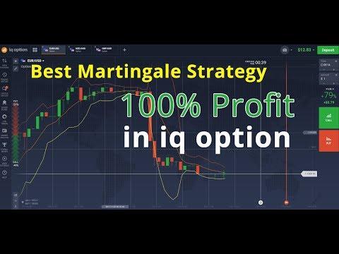 Parinkčių strategijos modeliavimas