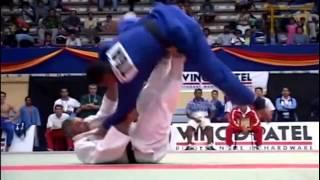 Old Judo Vine