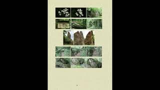 Philosophische Bildwanderung Vitaltour Wildgrafenweg Hochstetten Dhaun Naheland Rheinhessen
