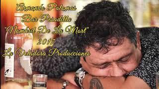 Nombril De La Mort (Audio) - Armando Palomas (Video)