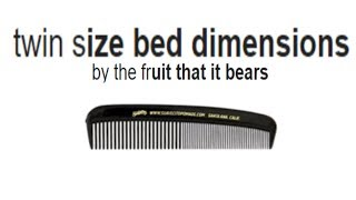 Twin Size Bed Dimensions [Google autocomplete]
