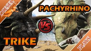 Pachyrhino - Free video search site - Findclip Net
