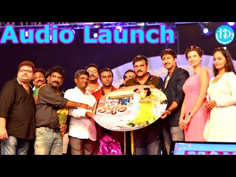 Loukyam Audio Launch