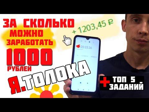 Сколько можно заработать в Яндекс Толока? Заработал 1000 рублей за...