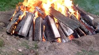 How To Burn A Large Tree Stump The Easy Way (burning Stumps) Stump Burning