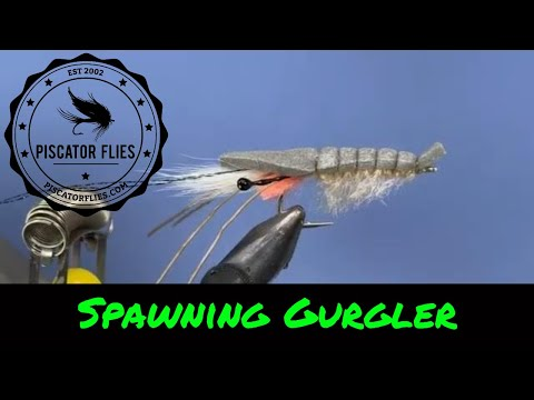 Spawning Gurgler