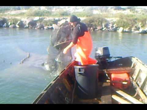 Video di pesca su un lishch