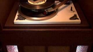 "Don McLean ""Dreidel"""