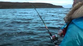 Рыбалка на кольском полуострове мотовский залив