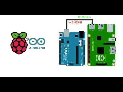 Arduino Raspberry Pi Communication - Raspberry Pi Receives Data from Arduino over USB connection
