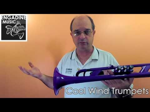 Cool Wind Plastic Student Trumpet Review