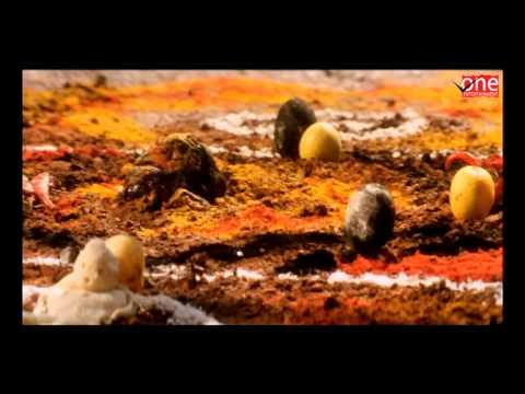 Aaj Ka Devi Putra | Hindi Dubbed Movies | Venkatesh Movies
