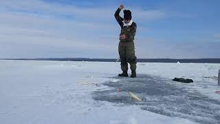 Рыбалка на финском заливе лужская губа
