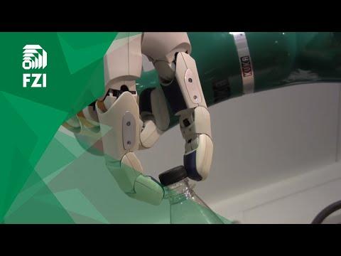 Bimanual Dexterous Manipulation for Autonomous Service Robots