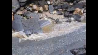 preview picture of video 'Forest Avenue flooding and road washout after weather event in Lebanon, NH'