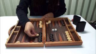 백개먼 게임설명 동영상 (backgammon play video)