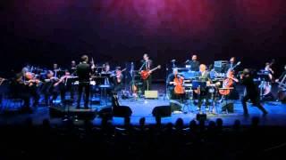 John Cale - Paris 1919 (Live with orchestra)