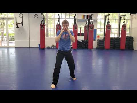 Online Course: Kids Krav Maga: Lesson #1