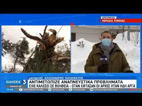 Νεκρός 80χρονος στο χωριό Τρούπι Εύβοιας | 16/02/21 | ΕΡΤ