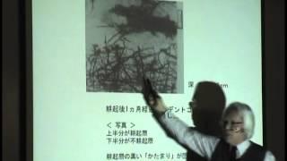 ヤマカワプログラム講演② 2012 理論2/4 耕盤