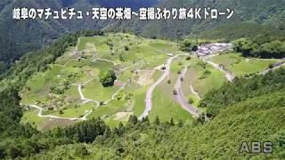岐阜のマチュピチュ・天空の茶畑~「空撮ふわり旅」4Kドローン