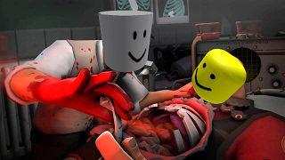 Meet The Medic But With Roblox Death Sounds.