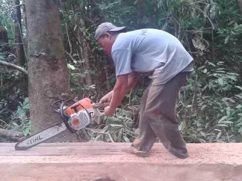 Stihl Chainsaw - Stihl Chainsaw Latest Price, Dealers