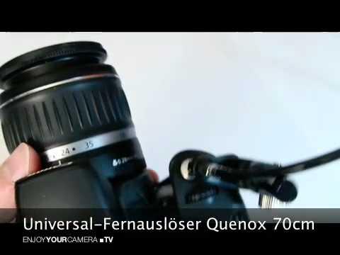 Universal-Fernauslöser Quenox 70cm - #eycquenox