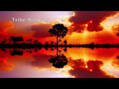 Afro Warriors - Uyankentenza (Feat. Toshi)