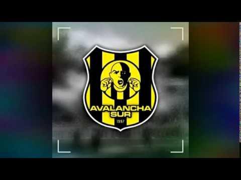 """""""Hay que alentar de corazón♪AVALANCHA SUR"""" Barra: Avalancha Sur • Club: Deportivo Táchira"""