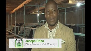 Started small, now producing 190 Liters of Milk per day – Dairy Farms Part 1