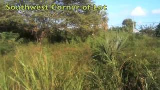 preview picture of video 'Olga Marin Avenue 66x75 01 Land Corozal Belize'