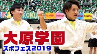 2019スポフェス 大原学園九州 八幡校\パフォーマンス✳︎シデーロス八幡/