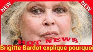 Brigitte Bardot Explique Pourquoi Elle A été Si Infidèle En Amour