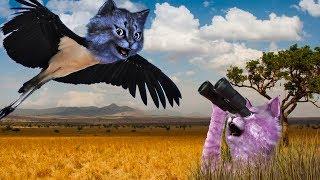 Я ЛЕЧУ!!! / ДИКАЯ САВАННА в РОБЛОКС / Wild Savanna ROBLOX