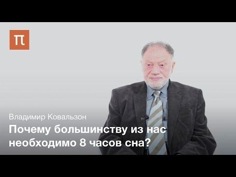 , title : 'Природа сна - Владимир Ковальзон'