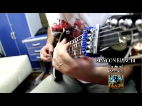 Animal Steve Vai by Maycon Bianchi Boss GT-10