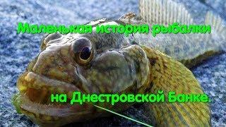 Бешенный клёв бычка. Рыбалка на Банке. Ловим бычка. Черноморский бычок. Люблю рыбу. Чёрное море.