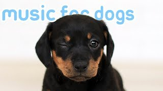 15 HOURS OF RELAXING DOG MUSIC! Music to Help My Dog Sleep! NEW 2019!