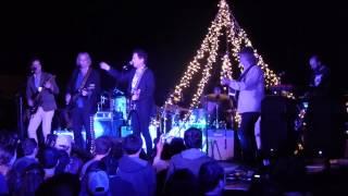 Steve Wynn - The Groom's Still Waiting At The Altar (2015 Todos Santos Music Festival)