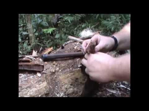 Definição de uma duração de fungo
