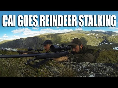 Cai goes Reindeer Stalking