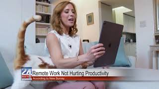 Remote Work Not Hurting Productivity